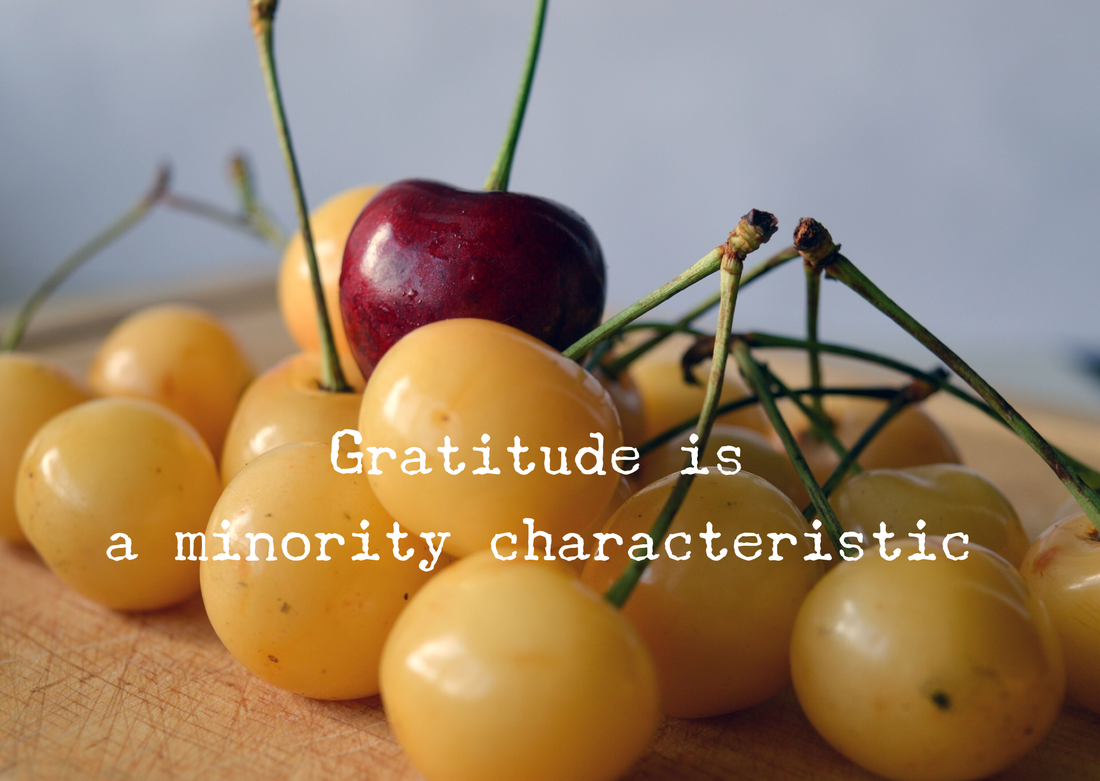 bunch of yellow cherries with just one red cherry on top. written on this photograph are the words, gratitude is a minority characteristic.
