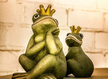 Image of two frogs