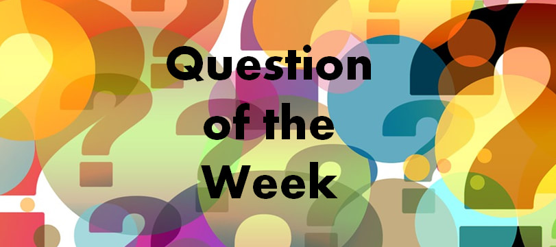 Question of the week banner by Perfect Layout Digital Marketing
